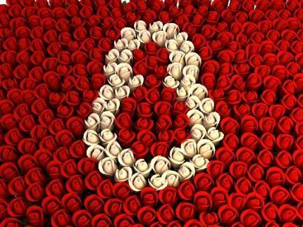 Respektimi, dashuria, mirëkuptimi e bëjnë të veçantë ditën e sotme